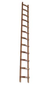 Holz-Anlegeleiter Bild